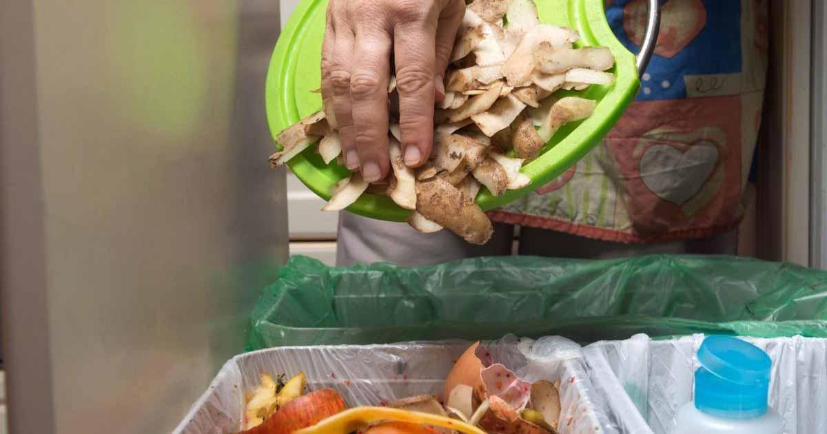 Forma eficaz de reciclar residuos de alimentos en hospitales