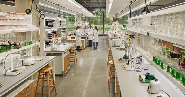 Soluciones De Diseño Ecológico Para Laboratorios Médicos