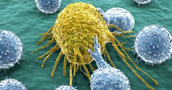 Tratamiento Para Diabetes Creado En Laboratorios De Investigación De Células Madres